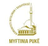 Logo, Myftinia e rrethit Puke
