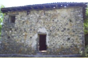 Xhamia e fshatit Micoj, Puke