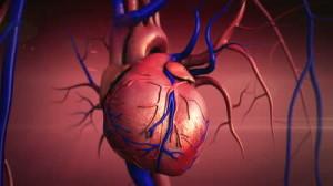 Zemra